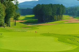Fairway und Green - Golfplatz